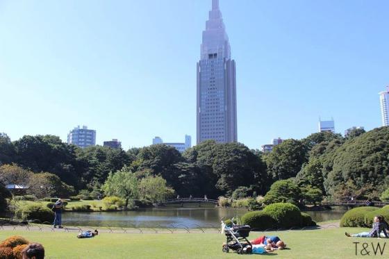 Shinjuku Gyoen 2