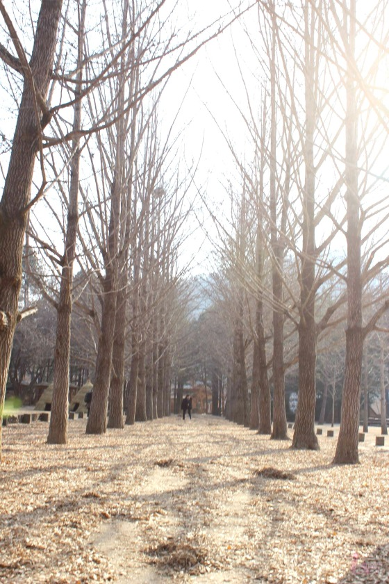 nami path2